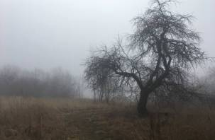 Россиянам рассказали о плохой погоде в ноябре
