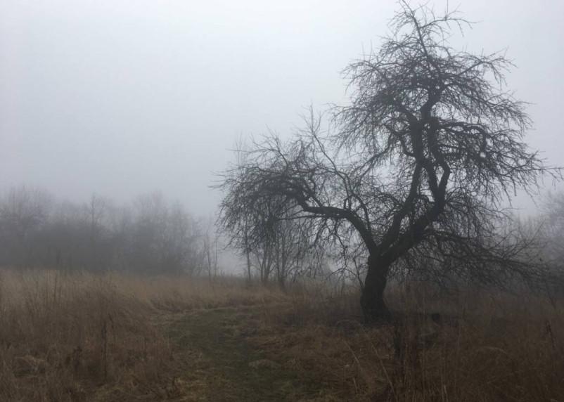 25 апреля в Смоленской области ожидается снег с дождем