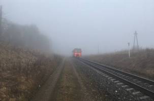 В Смоленской области школьнику-зацеперу отрезало ноги при падении с поезда