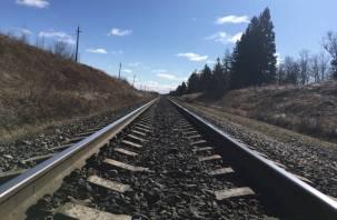 РЖД отменяет курсирование поездов в России