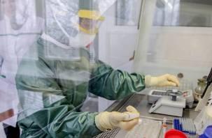 В Смоленской области протестировали на коронавирус почти 5 тысяч человек. В Твери — 12 тысяч