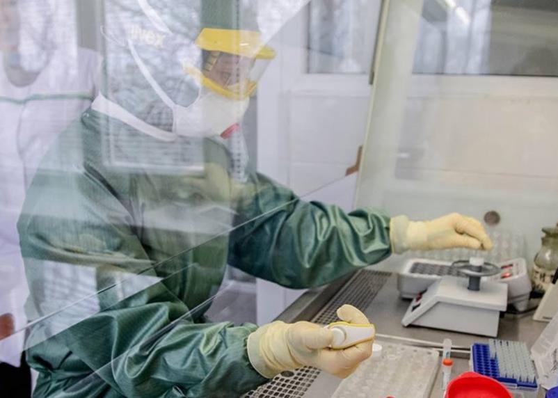 В России выявили свыше 400 зараженных коронавирусом