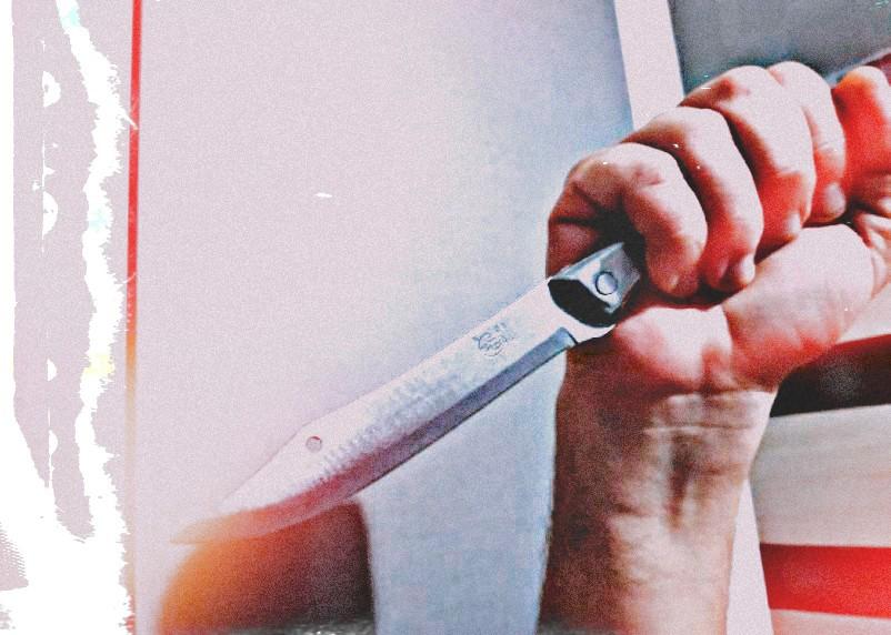 Смолянин схватил нож и бросился на брата. За бытовой конфликт ему грозит тюрьма