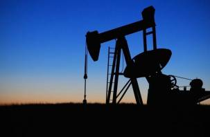 Нефть марки Brent подорожала до уровня января 2020 года