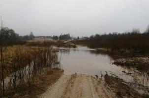 Жители смоленской деревни отрезаны от цивилизации из-за разлива реки