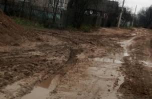 По колено в грязи. Следователи заинтересовались ситуацией с отсутствием дороги в вяземском микрорайоне