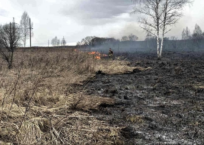 Смоленщина под угрозой. Лесные пожары влияют на распространение коронавируса