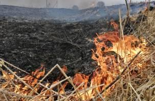 В Смоленской области из-за пала травы выгорел один гектар земли