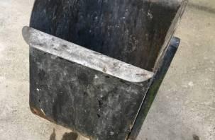 В условиях пандемии смоляне быстрее наполняют мусорные баки