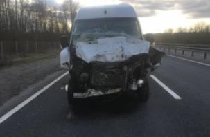 В Смоленской области микроавтобус протаранил автогрейдер. Пассажирка госпитализирована