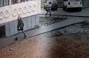 В Смоленске задержали педофила, напавшего на 10-летнюю девочку