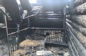 В Смоленском районе в горящей хозпостройке погибли домашние животные