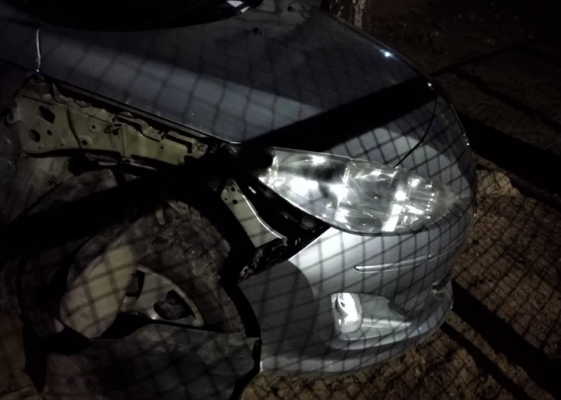 В погоне за котом стая собак в Смоленске разворотила автомобиль