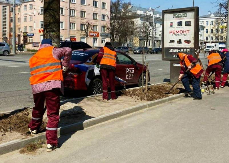 В Смоленске на проспекте Гагарина появятся липы