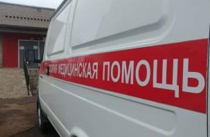В Смоленской области погиб 9-летний мальчик