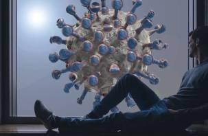 Сообщения об искусственном создании коронавируса признали фейком