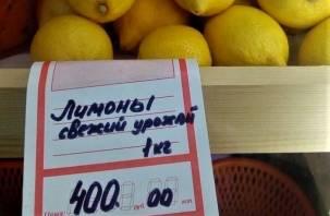 ФАС: в России снизились цены на лимоны