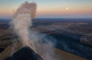 National Geographic опубликовал снимки горящих смоленских полей