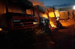 Массовое возгорание фур произошло в Сафонове