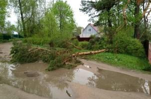 Сильный ветер повалил дерево и сорвал крышу в Гнёздове