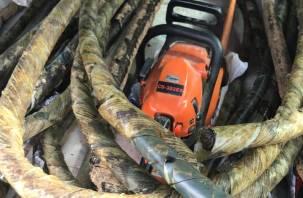 Судимый смолянин пытался похитить 30 метров магистрального кабеля