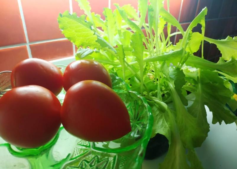 Нельзя есть огурцы с помидорами. Диетолог даёт пояснения