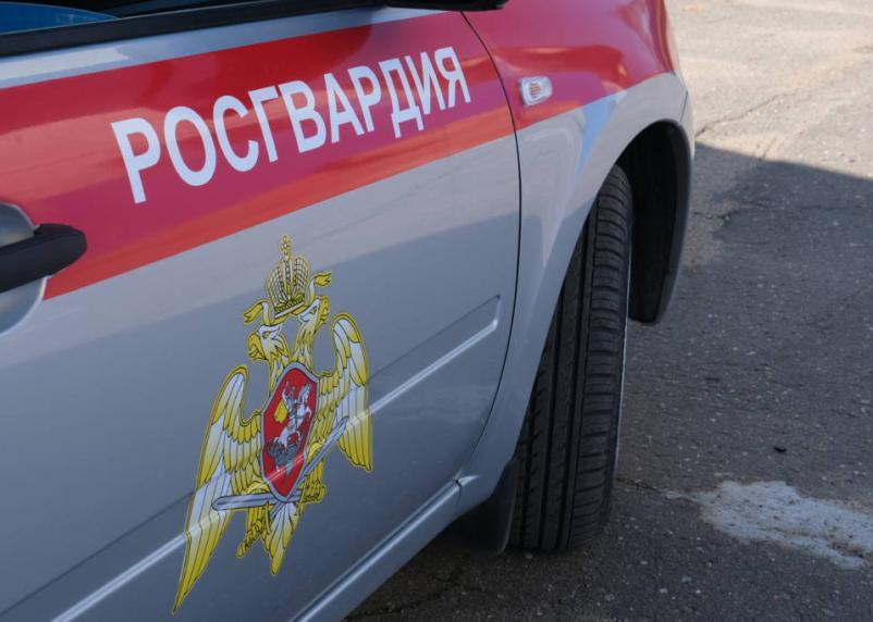 В Гагарине сотрудники Росгвардии пресекли дебош