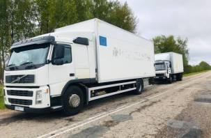 Смоленские пограничники пресекли ввоз 20 тонн фруктов без документов