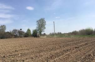 Смоленские аграрии должны уберечь пасеки от пестицидов