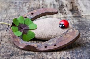 Судьба укажет правильный путь к удаче и деньгам 4 знакам зодиака