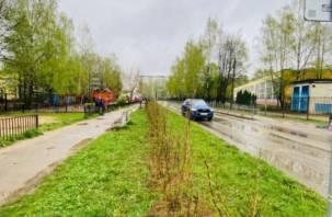 «Живая изгородь» появилась на одной из улиц Смоленска