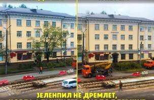 В Смоленске пилят деревья ради велодорожек. Велосипедисты убеждены, что все делается для машин