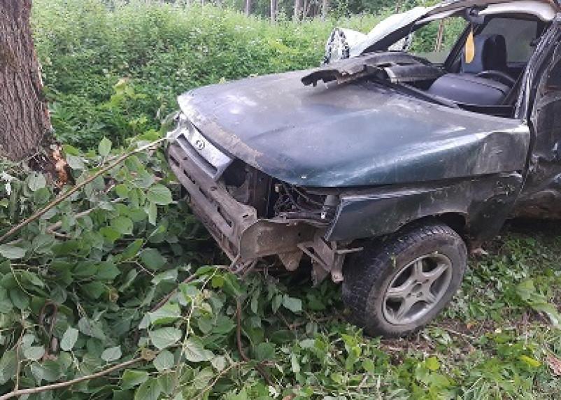 В Сычевском районе произошло смертельное ДТП
