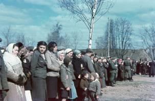 Зверские казни детей, страшный голод: как гитлеровцы пытались уничтожить будущее России
