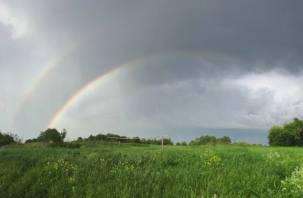 Гидрометцентр: погода в июле будет опасной