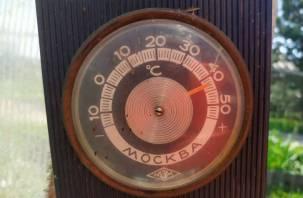 Синоптики: 2020 год может стать самым жарким в истории