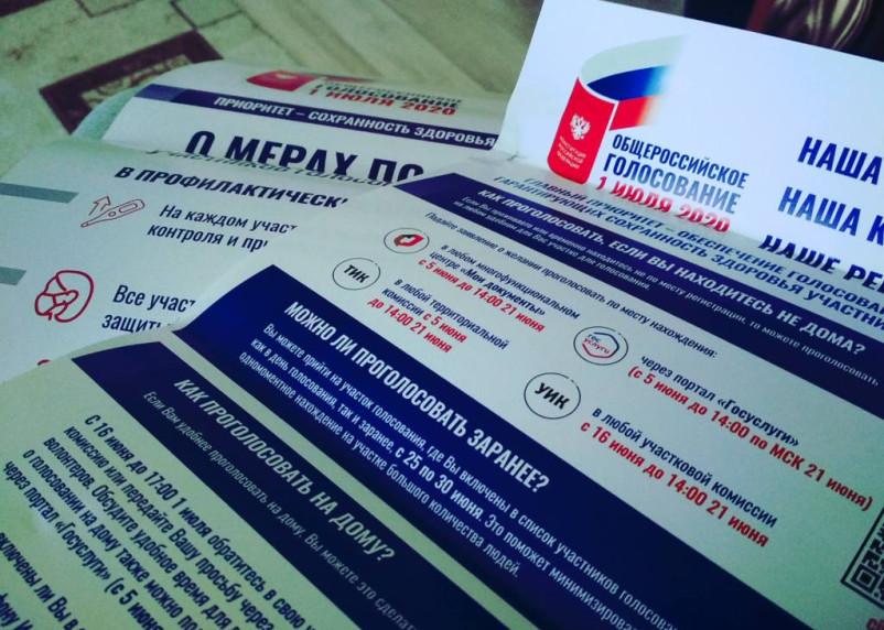 Российский журналист дважды проголосовал по поправкам в Конституцию