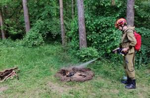 Смоленские лесные пожарные надели новые ранцы