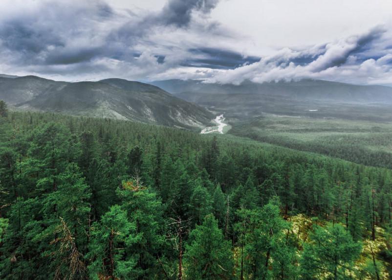 В Сибири зафиксировали тепловой рекорд