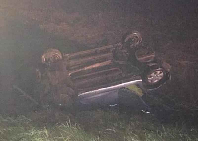 В Руднянском районе автоледи на Сузуки вылетела в кювет. Два человека оказались в больнице