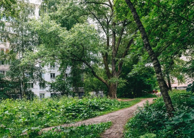 В Смоленске хотят за два года благоустроить новый сквер