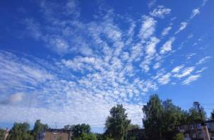Синоптик спрогнозировал погоду на лето