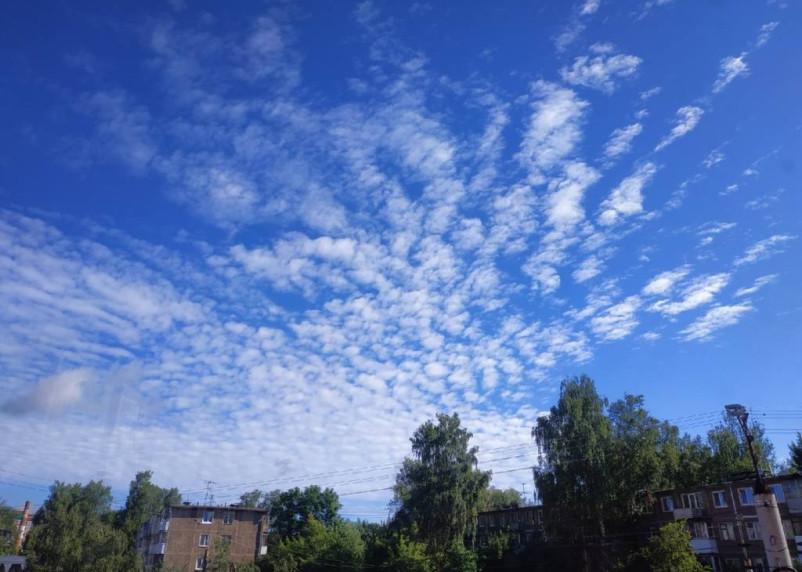 В Смоленской области в субботу будет по-летнему тепло