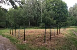 В парке Реадовка появился забор. Смоляне обеспокоены