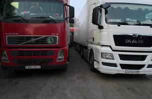 Смоленские пограничники задержали караван фур с санкционкой