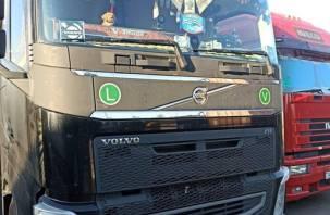 Смоленские таможенники задержали караван большегрузов с санкционкой