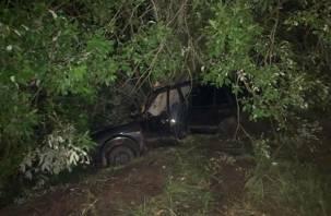 Протаранил дерево. В Ярцевском районе авария унесла жизнь молодого парня