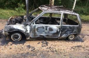 В Смоленском районе на ходу загорелась Ока