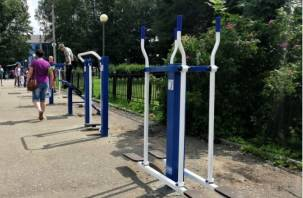 В Смоленске около Реадовского парка появились новые уличные тренажеры