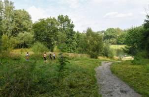 В районе Солдатского озера в Смоленске хотят оборудовать зону отдыха